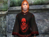 King of Worms' Robes