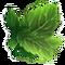 Wild Hunt Leaf-Dance Aura Icon
