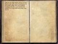 Aldimion's Journal 2.png