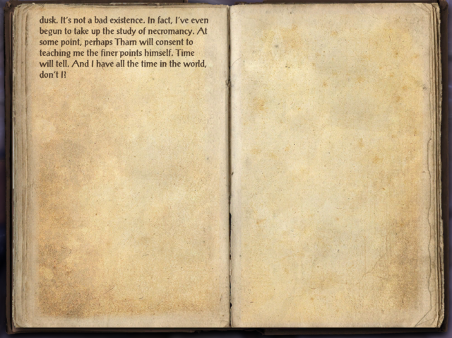 File:Aldimion's Journal 2.png
