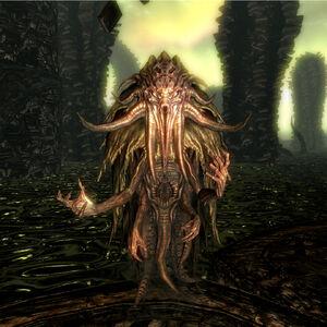 Poszukiwacz (Skyrim)-0