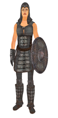 File:ChainmailArmor.png