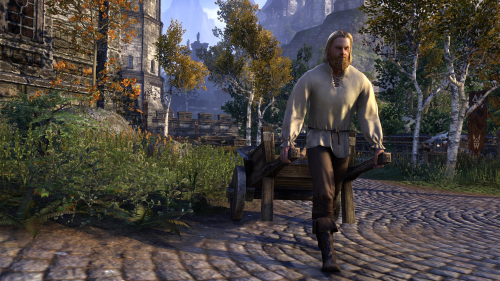 File:High Rock Pioneer Outfit.png