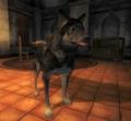 Rohssan's Dog.png