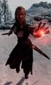 Vampire Assassin Dawnguard.png