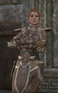 Yarmia Armor Dialogue