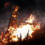 Podpalaczka Konfederacji Gildii (Legends)