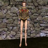 Дорогая рубашка (Morrowind) 2 жен