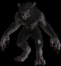 Werewolf from Skyrim
