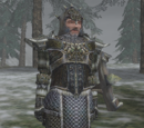 Nordic Mail Armor