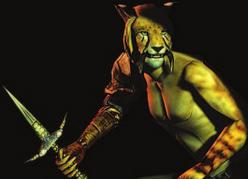 Каджит (Morrowind)