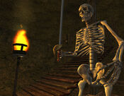 Skeleton Screenshot