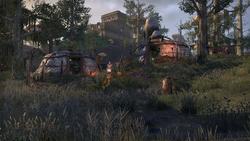 Лагерь Ахеммуза ESOM