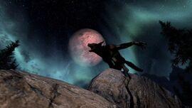 Вервольф на фоне луны