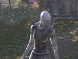 Bloodthorn Zombie
