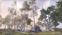Рифт (Online) — Каменный Бассейн