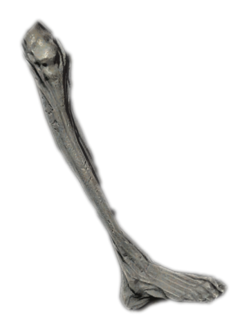 File:Ancient Vampire Leg.png