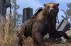 Cave Bear Mount