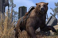 Cave Bear Mount.png