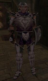 Duke's Guard