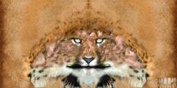 File:Khajiit texture 9.png