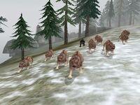 Lobos bloodmoon