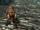 Alpha Wolf (Skyrim)