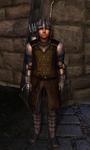 TESIV Guard Cheydinhal 1
