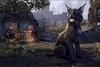 Dark Moons Lynx