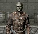 Dawnguard Armor