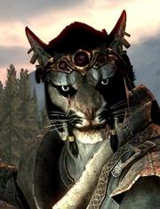 Khajiit (Skyrim) | Elder Scrolls | FANDOM powered by Wikia