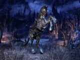 Mind Shriven Horse