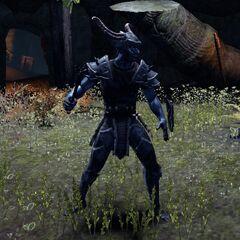 Wódz rieklingów z gry The Elder Scrolls Online