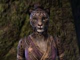Zulana (Perchoir de Khenarthi)
