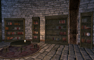Frostcrag Spire Library Left