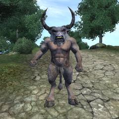Władca Minotaurów z gry The Elder Scrolls IV: Oblivion.