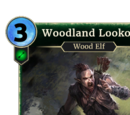 Woodland Lookout