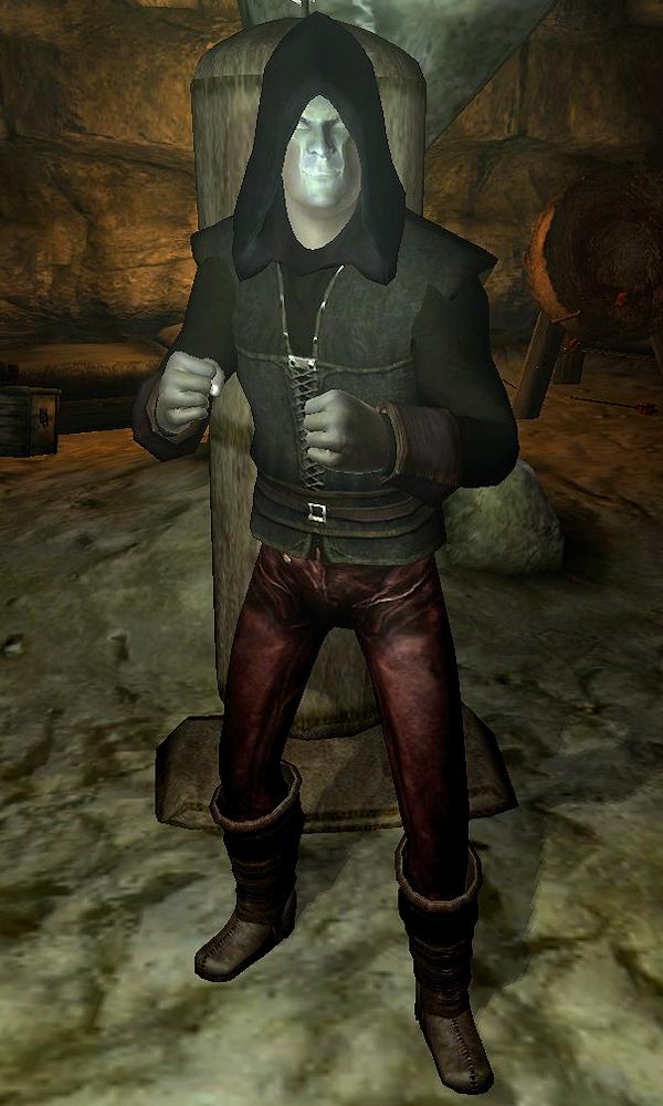 Dark Minion   Elder Scrolls   FANDOM powered by Wikia