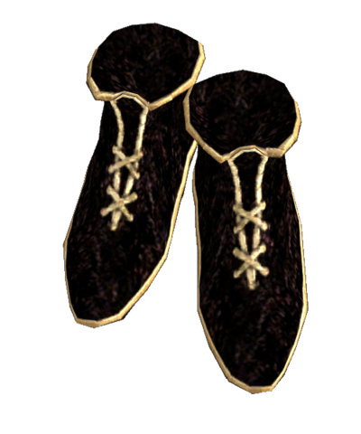 File:Gold Trimmed Shoes.png