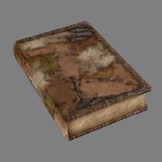 Огма Инфиниум (TES 4 Oblivion)
