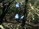 Błękitny motyl (Skyrim)