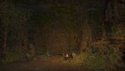 Гнездо Сновидений