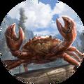 Enraged Mudcrab avatar (Legends).png