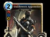 Guildsworn Apprentice