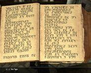 Scrittura falmer 6