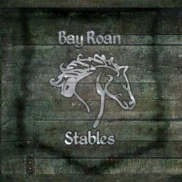 File:TESIV Sign Bayroan Stables.png