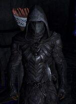 Nightingale armor-587x800