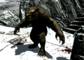Werebear at Snowclad Ruins.png