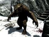 Hombre oso (Dragonborn)