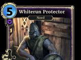 Whiterun Protector